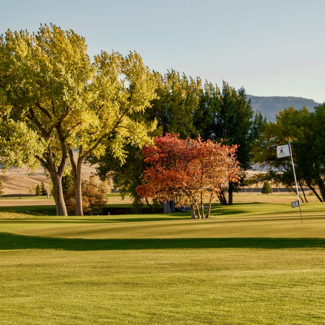 brightly colored trees on casper country club golf course